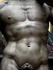 David's Torso (G E G / VEVZE) Tags: sculpture man david male men art pecs statue museum nude body chest albert victoria front cast corps and torso michelangelo abs homme pectoral pubis