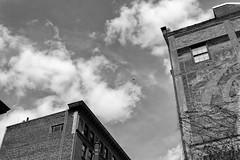 StPaulArtCrawl2016_46453-.jpg (Mully410 * Images) Tags: sky blackandwhite monochrome clouds buildings advertising balloon stpaul wallart 2016 mylarballoon artcrawl niksilverefexpro