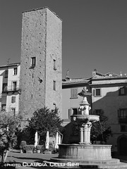 Viterbo (Claudia Celli Simi) Tags: blackandwhite bw tower fountain italia bn fontana viterbo architettura biancoenero lazio citt medioevo tuscia casatorre piazzadelges