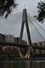 Anzac Bridge (sabinakurt62) Tags: bridge sunset detail building beautiful architecture nikon sydney australia anzacbridge