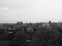 sin city (vfrgk) Tags: city nyc trees urban blackandwhite bw panorama monochrome architecture cityscape chaos eastharlem cityview urbanphotography morningsideheights urbanfragment
