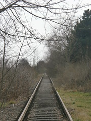 Reste Gterstrecke Teltow 2016 - 33 (Abandoned-Stillgelegt Berlin) Tags: railroad trees tree abandoned train germany deutschland bush track tracks railway bushes bume brandenburg baum gleise busch ballast gleis bahnstrecke stillgelegt trackbed teltow bahndamm schotter schwellen bsche b landbrandenburg betonschwellen bahnbergnge holzschwellen betonschwelle holzschwelle altebahnstrecke gterstrecke stadtteltow ehemaligegterstrecke ehemaligebahnstrecke