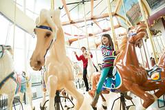 WRHS-6000 (FarFlungTravels) Tags: ohio horse history beach museum kids fun play ride cleveland carousel activity euclid merrygoround universitycircle euclidbeach