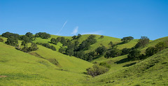 Hill View - Rolling Hills Open Space Park - Solano County - California - 26 March 2016 (goatlockerguns) Tags: california park county trees usa mountains west tree nature coast oak open natural space unitedstatesofamerica vacaville hills trail bayarea eastbay solano rolling fairfield vaca