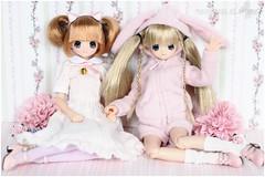 Chisa's Birthday (sherimi-chan) Tags: secretgarden chisa azone pureneemo excute otoginokuni chisabirthday