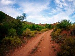 Little Karoo track (Ciaran C Reilly) Tags: sky clouds southafrica track little sa karoo oudtshoorn calitzdorp redstonehills