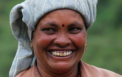 Tea Picker (12) (Richard Collier - Wildlife and Travel Photography) Tags: people woman india portraits kerala southernindia teapicker