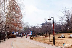 Seoul: Children's Grand Park (Seoul Korea) Tags: park city winter asian photo asia capital korea korean photograph seoul kr southkorea   kpop  republicofkorea childrensgrandpark canoneos6d