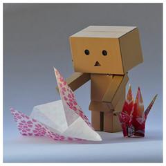Sometimes life can get a bit confusing - Danb (steffi's) Tags: japan toy manga merchandise spielzeug figur yotsuba danbo wellpappe origamicrane objectphotography danbooru indooractivities danboard kiyohikoazuma   kartonmnnchen danb kartonschachtelroboter