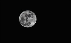 Christmas Cold Moon (Sue90ca Less Flic*kr Time, More Living Life Time) Tags: christmas moon canon 6d 2015 coldmoon challengegamewinner lastmoon
