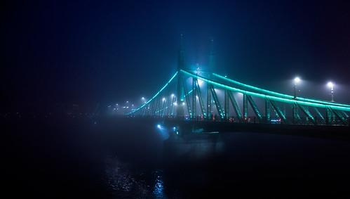 Winter evening and the Liberty Bridge