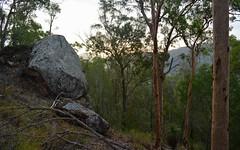 sandstone woodland (dustaway) Tags: outcrop nature woodland landscape sandstone rocks australia queensland australianlandscape lateafternoon canungra sequeensland darlingtonrange