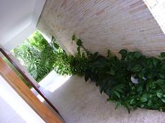 alexandre-herchcovitch---assessoria-e-consultoria-por-eduardo-delphino-paisagista_4251819655_o (3) (Eduardo Delphino Paisagista by O2 Paisagismo) Tags: architecture landscape design saopaulo paulo sao santander paisagismo alexandreherchcovitch landscapedesigner eduardodelphino arquitetopaisagistaeduardodelphino eduardodelphinopaisagista paisagistasaopaulo architecturelandscapedesigner