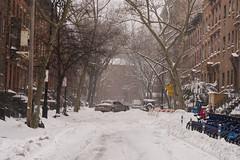 Snowstorm Jonas-21 (Diacritical) Tags: snow brooklyn iso800 pattern jonas blizzard 70 f50 2470mmf28 0ev nikond4 nikoncorporation sec secatf50 douglascpalmer2014 january232016 snowstormjonas