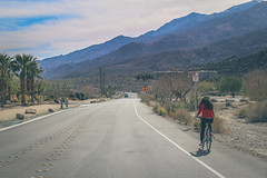 palm springs (flrent) Tags: california bike indian united canyon palm springs states