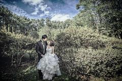 DSC_9103 (kevin lai 1980) Tags: wedding people landscape nikon dress  d4s