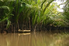 Mekong dreaming (rachFNQ) Tags: trip travel cruise water river boat vietnam meander mekongdelta mekongriver travelphotography