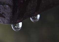 Op rij (Ilona67) Tags: water sneeuw kou reflectie druppels