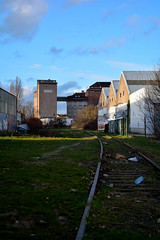 Urban Jungle #1 (zebzebzeb) Tags: nancy lorraine usine urbex grandsmoulinsdeparis