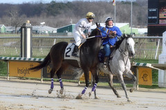 "2015-12-31 (30) r4 Jeremy Rose on #2 Escrow Kid (JLeeFleenor) Tags: photos photography md marylandracing marylandhorseracing equine laurelpark jockey جُوكِي ""赛马骑师"" jinete ""競馬騎手"" dżokej jocheu คนขี่ม้าแข่ง jóquei žokej kilparatsastaja rennreiter fantino ""경마 기수"" жокей jokey người horses thoroughbreds equestrian cheval cavalo cavallo cavall caballo pferd paard perd hevonen hest hestur cal kon konj beygir capall ceffyl cuddy yarraman faras alogo soos kuda uma pfeerd koin حصان кон 马 häst άλογο סוס घोड़ा 馬 koń лошадь maryland"