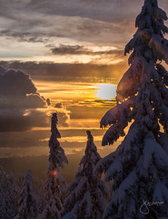 Mount Seymour 2015/16 (jennchanphotography) Tags: travel winter sunset wild mountain snow canada ski tourism nature sport snowboarding skiing bc landmark tourist explore local seymour iconic attraction chairlift activities mountseymour jennchanphotography