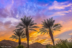 Balmy Palms (MarcCooper_1950) Tags: california blue sunset orange mountains colors clouds palms landscape nikon desert sundown dusk hills palmtrees serenity hdr laquinta lightroom d810 marccooper