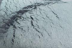 (Miksang Natasscha, Contemplative photography) Tags: winter cold ice window outside outdoors frozen contemplative miksang vorst goodeye iceonwindow contemplativephotography miksangphotography openingthegoodeye natasschadehoop