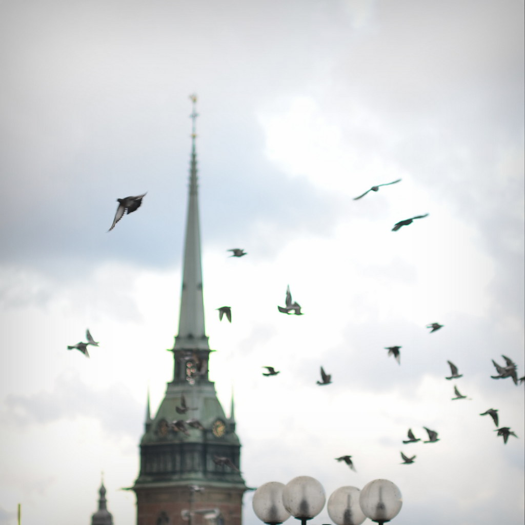 The World's Best Photos Of Stockholm And Tyska