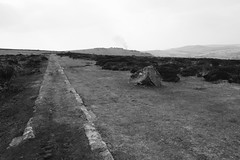 Haytor Granite Tramway (heathernewman) Tags: uk england blackandwhite history industry rural countryside view heather devon vegetation moor dartmoor moorland quarries dartmoornationalpark southwestengland sssi haytordown haytorgranitetramway granitetramway