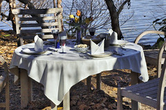 275a-'Lakeside Table #1' (Greenbelter) Tags: