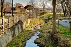 Bachlauf durch Münchenreuth (GerWi) Tags: houses sky house nature wasser dorf outdoor natur wiese himmel bach gras garten gebäude häuser bachlauf dorfidylle münchenreuth