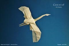 Grue en vol - Choi Dong Gyu (Papygami) Tags: en de flying origami crane choi vol papier papiroflexia grue dong vuelo gyu pliage anade papygami