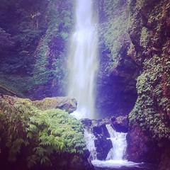#indonesia #munduk #waterfall #melanting (djulinho) Tags: indonesia waterfall munduk melanting uploaded:by=flickstagram instagram:venuename=mundukwaterfall instagram:venue=35880811 instagram:photo=80706976250056024816134992