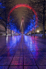 The Eye Reflected (scott.hammond34) Tags: city longexposure nightphotography trees reflection london eye wet outdoor path londoneye ef1740f4lusm canon6d