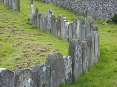 Gravestones standing shoulder to shoulder in the churchyard of St Mary's, Chartham (P1040679) (alg24) Tags: uk england graveyard kent flickr graveyards tombstone graves gravestone churchyard tombstones stmaryschurch gravestones churchyards stmarys gravemarkers gravemarker chartham stmaryschurchchartham