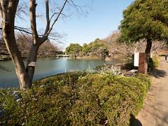 P1590565 (Rambalac) Tags: asia japan lumixgh4 pond water азия япония вода пруд