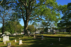Rest In The Gentle Shade (redhorse5.0) Tags: monument cemetery graveyard tombstone bluesky oaktree gravemarkers greengrass norcrossgeorgia sonya850 redhorse50