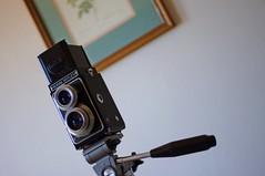 Camera and Picture (rolandmks7) Tags: camera tlr reflex kodak 620 velbon valspar sonynex5n