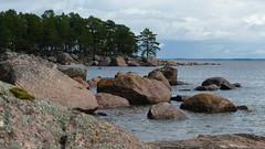 Seashore north of Cape Honkaniemi from the south (Kaunissaari, Pyht, 20150731) (RainoL) Tags: sea summer finland landscape geotagged july balticsea fin seashore archipelago 2015 kaunissaari pyht kymenlaakso pyttis honkaniemi 201507 fager 20150731 geo:lat=6035430015 geo:lon=2678338052