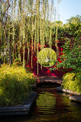 (the.redhead.and.the.wolf) Tags: nature water architecture river garden singapore botanicalgarden marinabay gardensbythebay marinabaysands