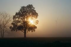 000615350018 (derrickariley) Tags: color film abbey fog sunrise 35mm canon ae1 program 100 turbine conception ektar