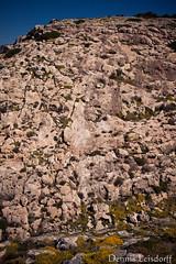 2016-04-09_IMG_3529 (talentfrei79) Tags: espaa primavera canon mar spain mediterraneo abril espana april formentera islas spanien mediterrneo baleares frhling balearen balears 2016 mittelmeer illes 50d pityusen