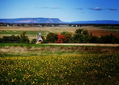 Seasons: Fall (halifaxlight) Tags: autumn trees canada fall field landscape novascotia hills colourful annapolisvalley grandpre capeblomidon churchofstevangeline