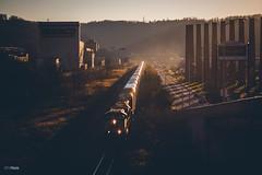 Setting sun eastbound (benpsut) Tags: railroad sunset us waterfront unitedstates pennsylvania trains homestead backlit glint sillouhette csxt csxpittsburghsub csxt7