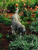 DOG STATUARY, TULIPS AND OTHER PLANTS IN THE OZARKS (kelsey61) Tags: flower flowers fleur garden gardens plant plants gardenlandscaping gardenstatuary statuary