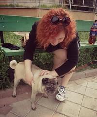 when you find a bitch cuter than you (Emma Lorena) Tags: pug