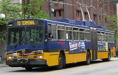 King County Metro Breda Trolley 4243 (zargoman) Tags: seattle county travel bus electric king metro trolley transportation transit converted breda articulated kiepe elektrik kingcountymetro highfloor