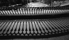 Union Terrace Gardens - Aberdeen (PeskyMesky) Tags: shadow blackandwhite bw monochrome canon blackwhite aberdeen lowsun unionterrace unionterracegardens canoneos500d