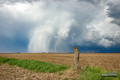 Hail Shaft Post (kevin-palmer) Tags: sky white green grass sunshine weather clouds wooden illinois spring afternoon post clinton sunny stormy farmland falling april thunderstorm storms distant hailshaft tamron2470mmf28 nikond750