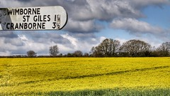 Almost There (Thank you for 4M+ views.) Tags: sky sign yellow landscape spring dorset april rapeseed nickfewings